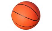 Баскетбольный щит на регулируемой опоре